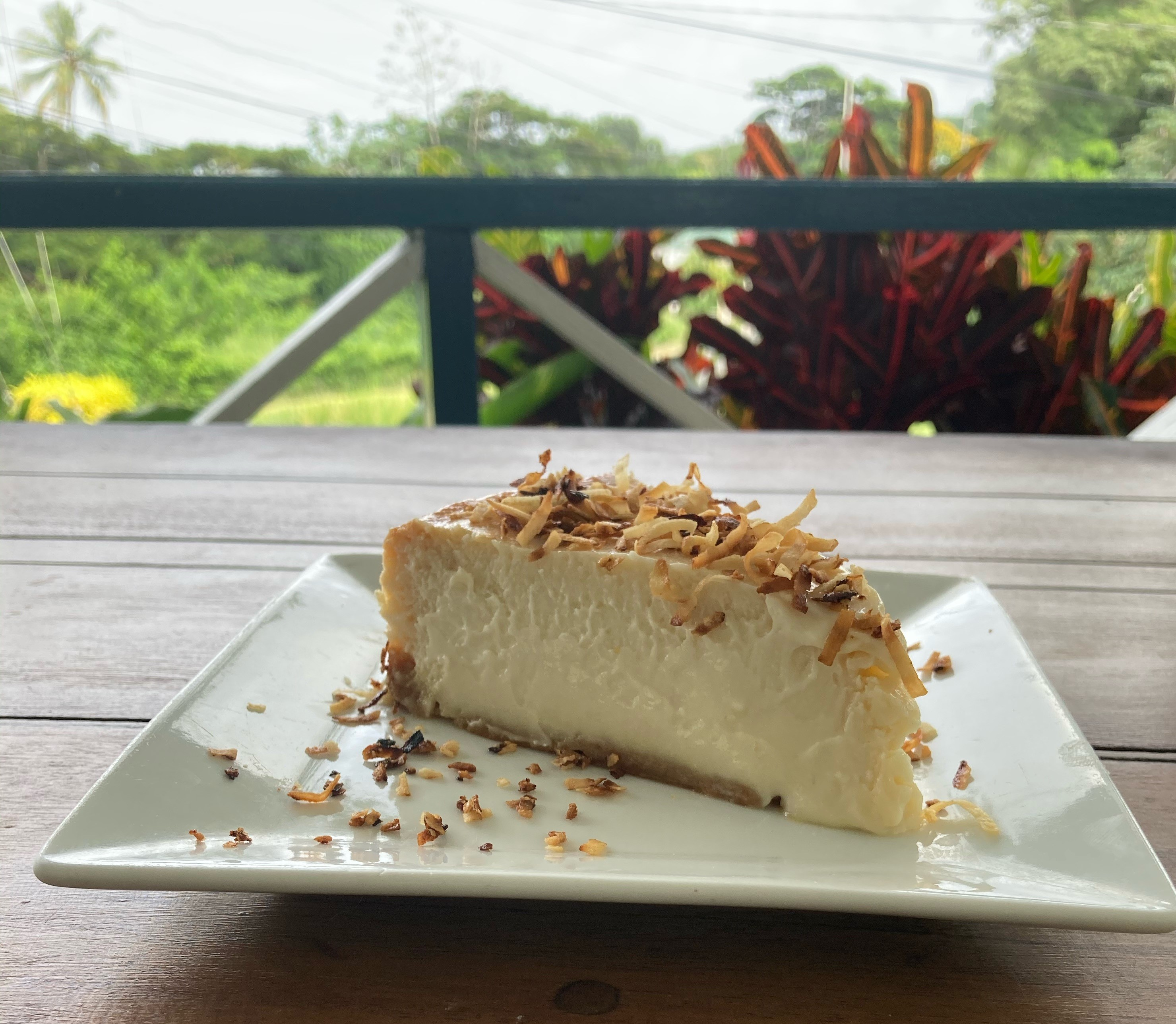 Fish Pot-Coconut Cheesecake